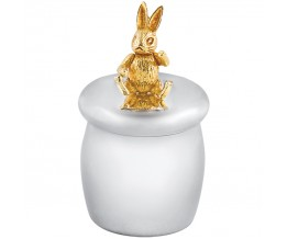 Tooth Fairy Box With Gold Plated Moving Rabbit Sterling Silver
